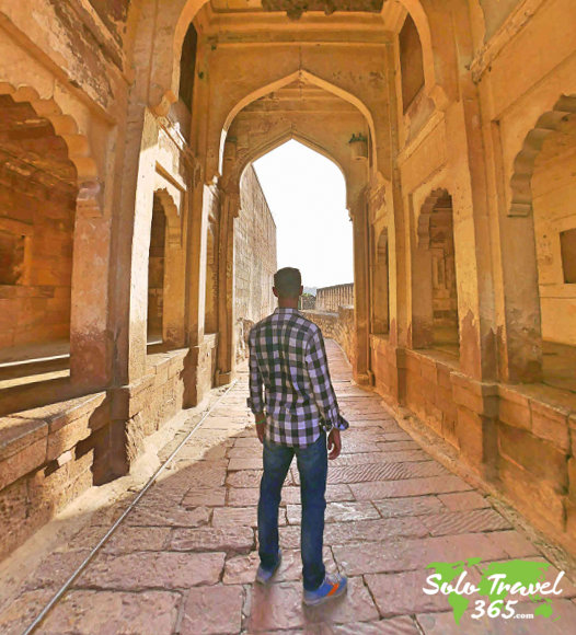Best Organized Tour companies to plan your trip.